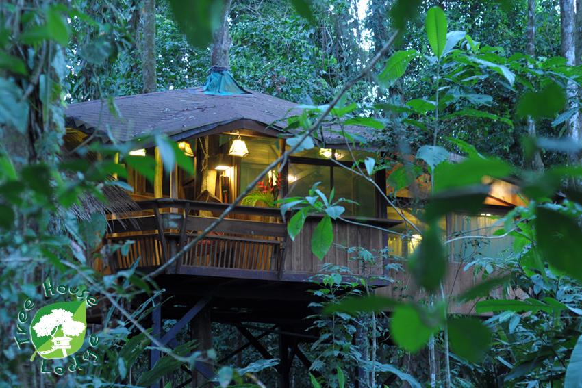 The Ten Top Tree House Hotels Travelnerd