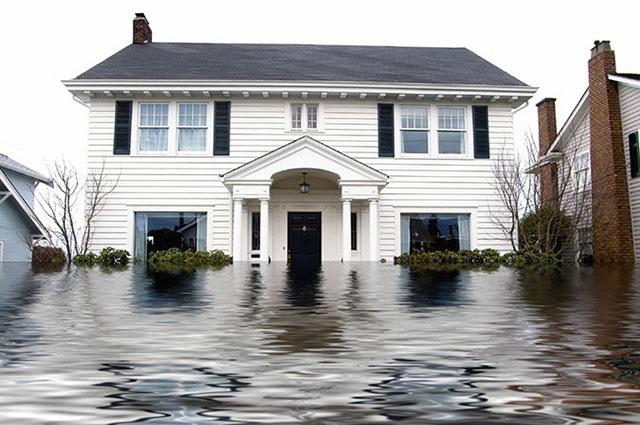 FloodHouse