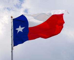 texas flag*304