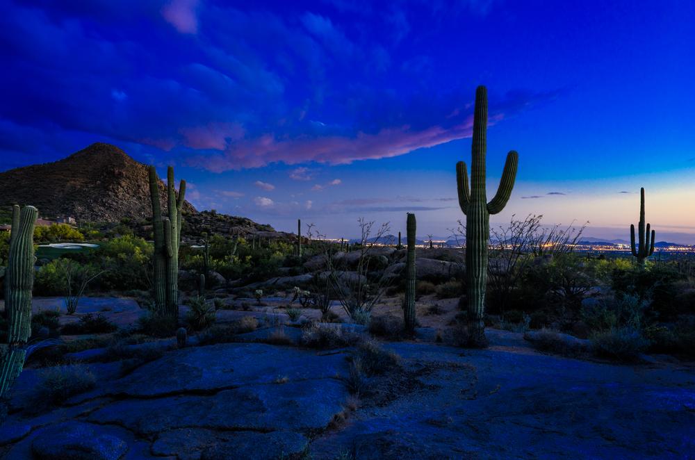 Best Cities to Rent in Arizona