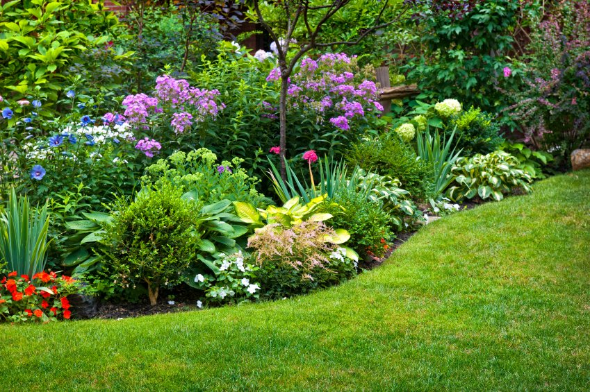 How To Start A Landscaping Business Nerdwallet