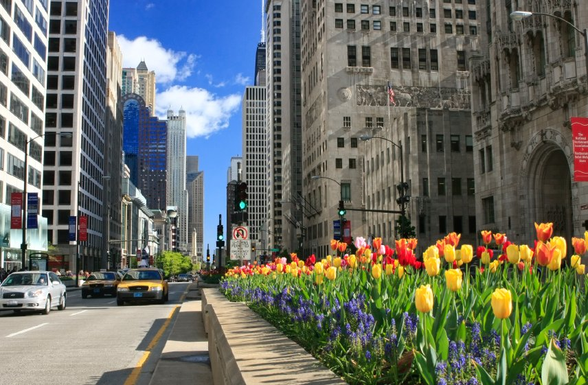 Best Places To Start A Business In Illinois Nerdwallet