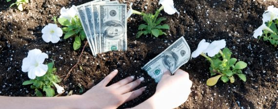 You Can Learn to Grow Money in Your Garden
