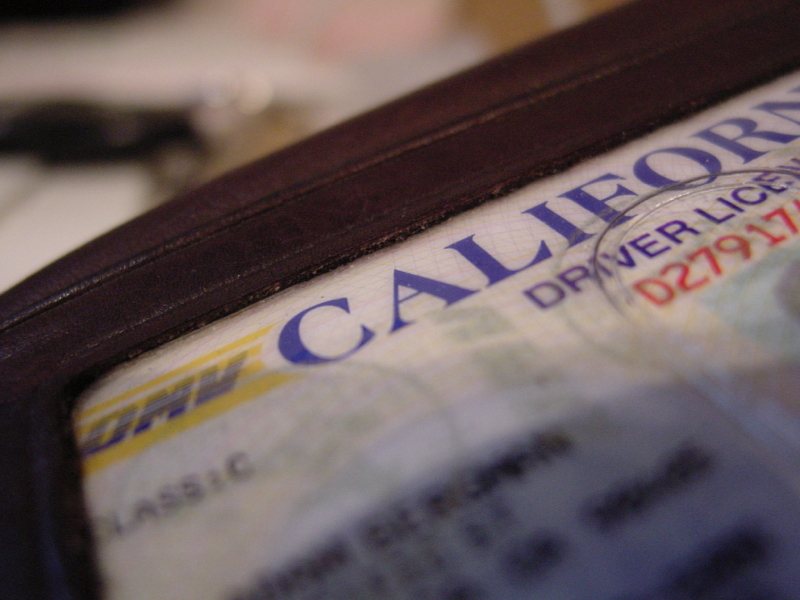 undocumented immigrants drivers licenses california