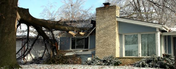 What Could Possibly Go Wrong? Top Home Insurance Claims Revealed