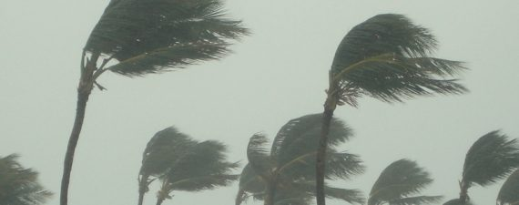 How to Prepare for a Hurricane and Insurance Claims