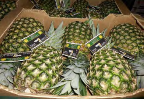 How one exporter used forbidden fruit to cheat U.S. consumers