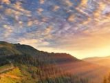 7-great-california-wine-regions-napa