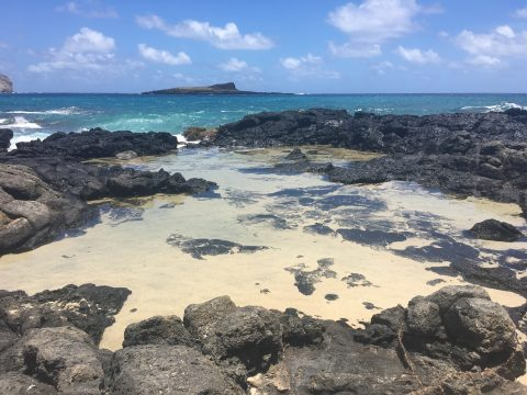 20180627_maria_can_photo_ops_oahu_tidepools