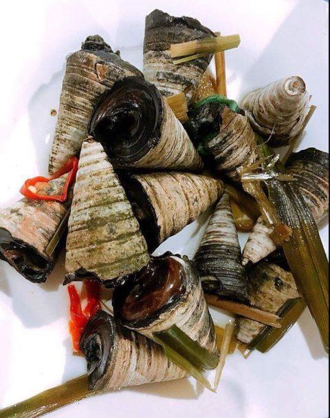 snails_moxie_zhou