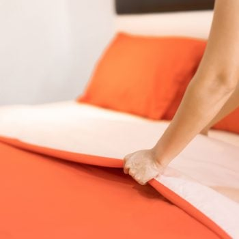 Does Renters Insurance Cover Bedbugs?