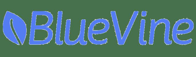 BlueVine Business Checking