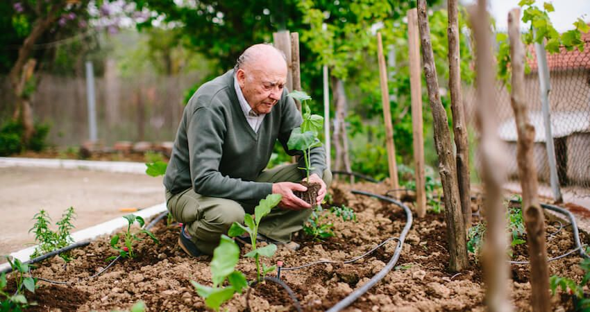 Personal pension: arranging your own retirement saving